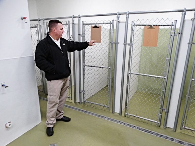 Bayonne's animal control contractor in hot water