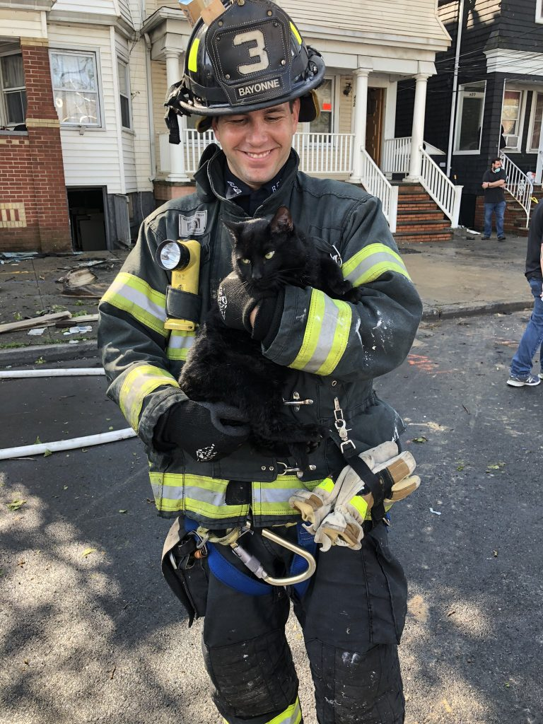 Bayonne firefighters rescue five cats from simultaneous fires