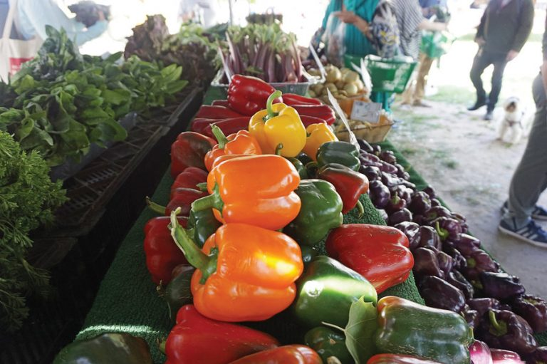 Farmers markets to reopen in Jersey City